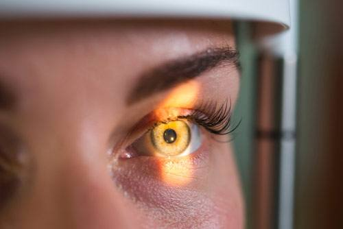 ophthalmologist services