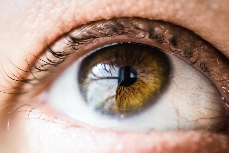 Brown eye in macro